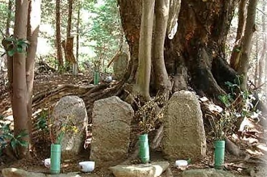 ►The gravesite of Maria Takayama (d. 1596), mother of Blessed Justo Takayama Ukon, still draws domestic tourists today to the ancestral Takayama Village in Toyono-cho, Osaka Prefecture. (Salamat kay YUI YAMADA, Philippine Department of Tourism-Osaka). ◘